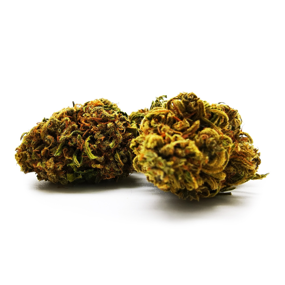 Infiorescenza Red Skunk, Ministry Of Silly Walks -  Formato 1 gr
